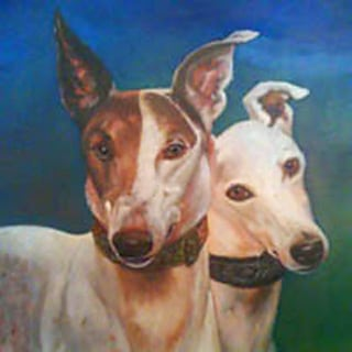 Greyhounds Rock Canine Cancer Angels Asher and Orion