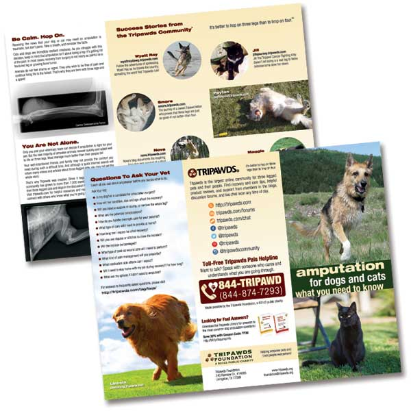 tripawds veterinary outreach brochure