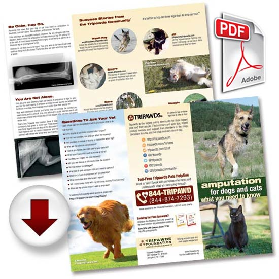 tripawds brochure download