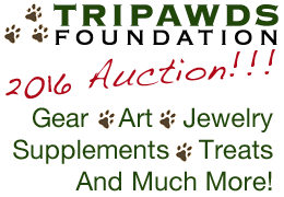 Tripawds Auction
