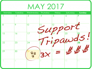 Triple Your Tripawds Support!