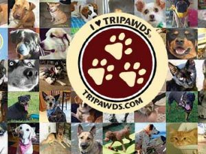 Tripawds Donors