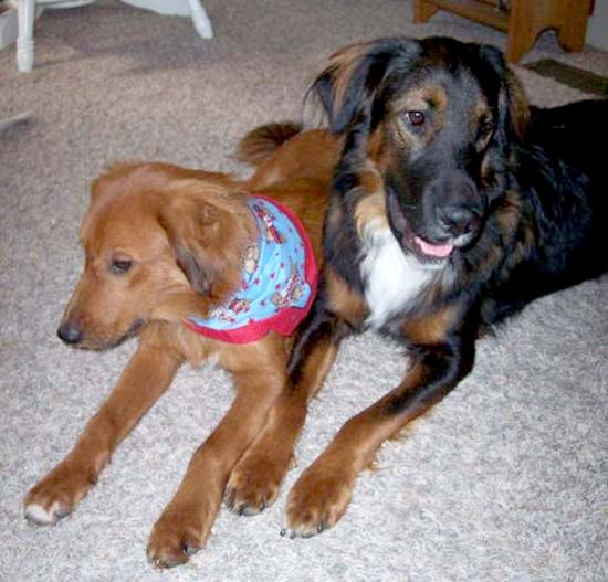 Murphy and Cassie
