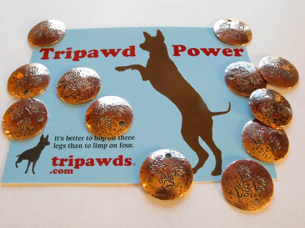 Tripawds Charms for Heroes Donor Level