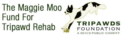 free Tripawd dog cat rehab therapy