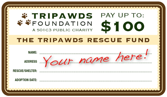 Tripawds Rescue Fund