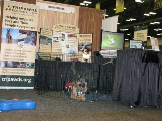 AAHA 2016 Tripawds Exhibit