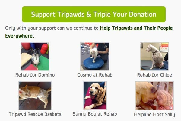 triple your tripawds support