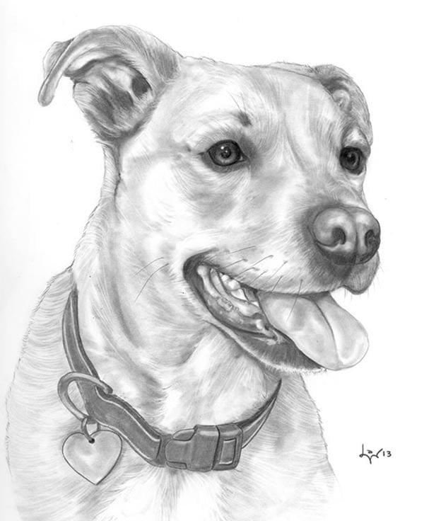 Brendol Pencil Portrait