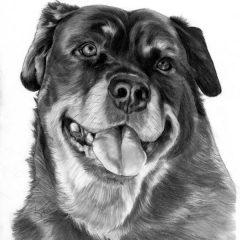 Sassy Pencil Portrait
