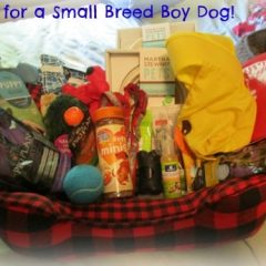 Petsmart Gift Basket Boy Dogs