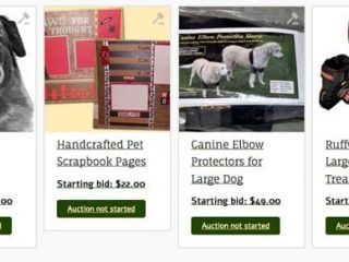 New Tripawds Auction Items