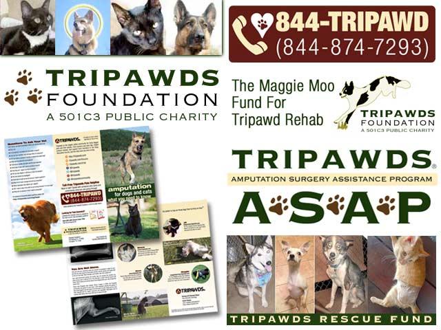 2017 Tripawds Fund