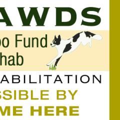 maggie moo rehab fund sponsor