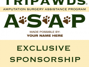 sponsor asap