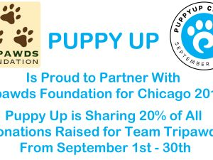 Puppy Up Chicago 2017
