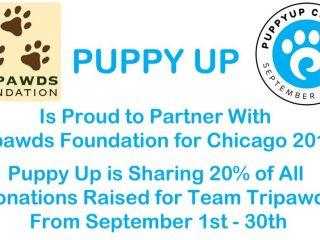 Puppy Up Chicago 2017