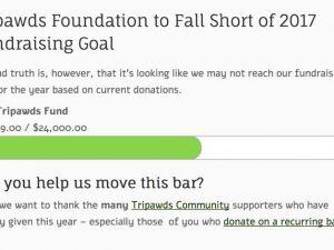 2017 Tripawds Fundraising
