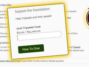 2018 Tripawds Fund