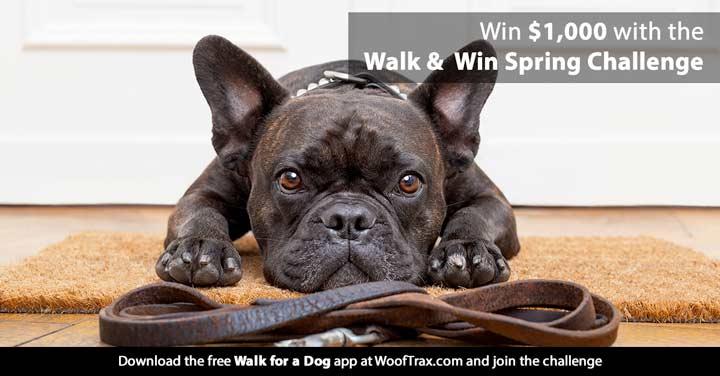 walk and win