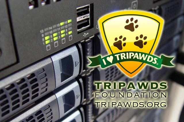 Support Tripawds