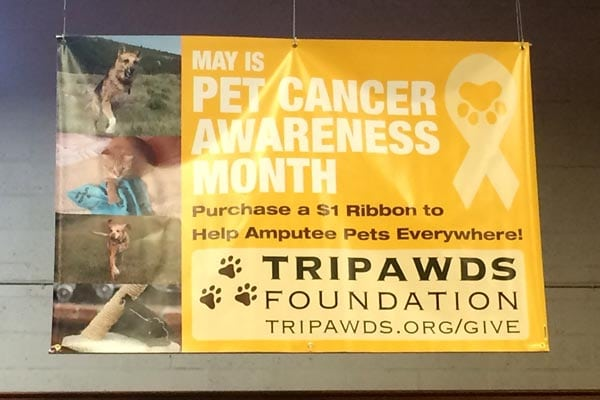 That Pet Place Supports Tripawds