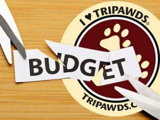 Tripawds Budget Cuts