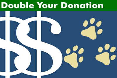 double your donations