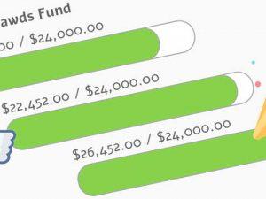 2018 Tripawds Fundraising