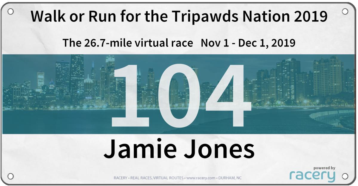 Run for Tripawds Foundation 2019