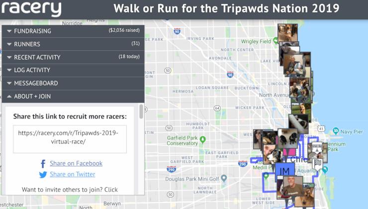 Team Tripawds Virtual Race 2019