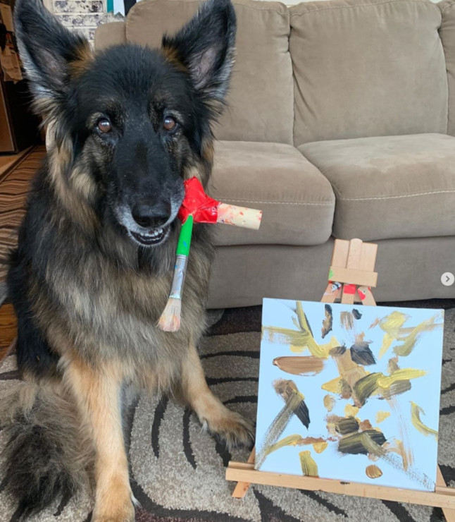 amputee dog painting