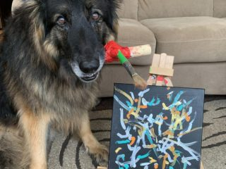 amputee dog paints