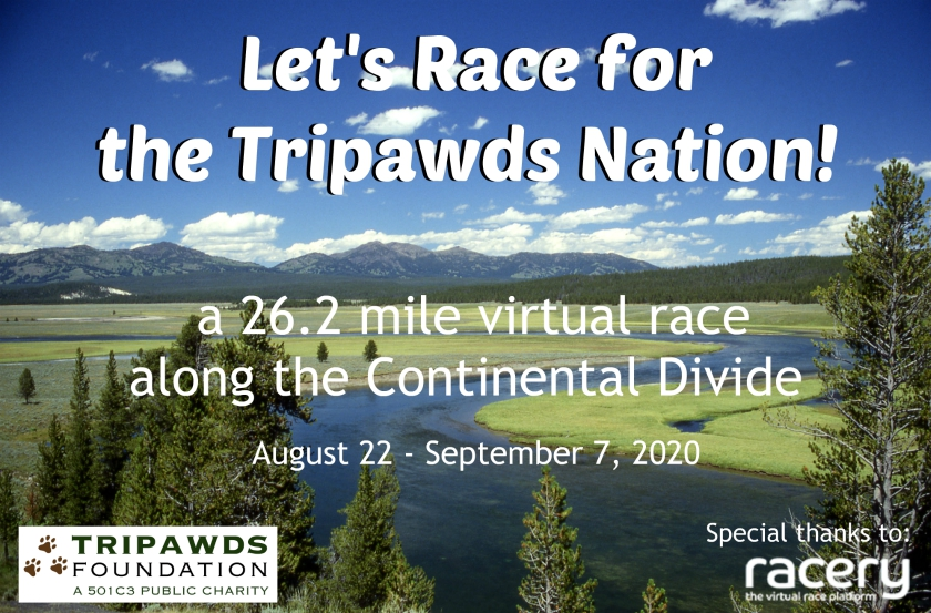 Race for Tripawds Virtual Marathon