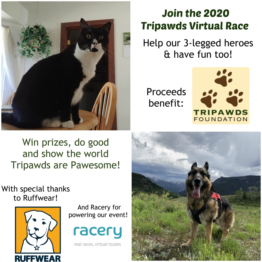 Race for Tripawds 2020