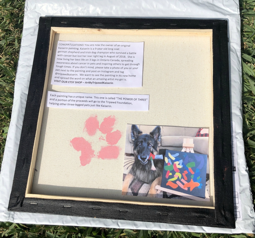 Tripawds painting fundraiser