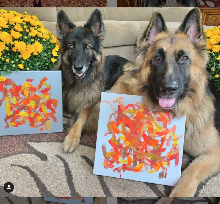 The painting dog duo