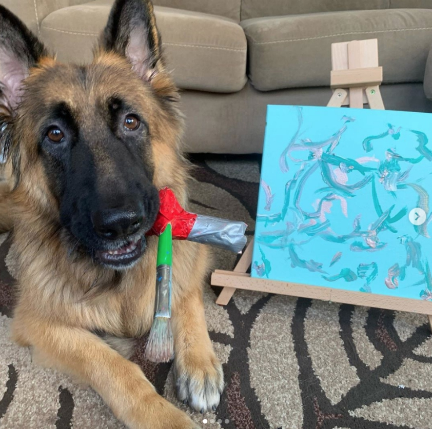 Tripawds paintings by Schultz