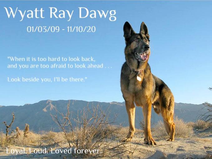 Wyatt Ray