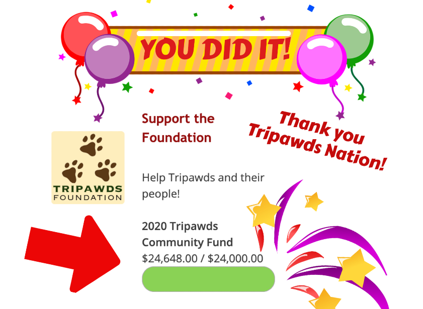 2020 Tripawds Community Fund Final