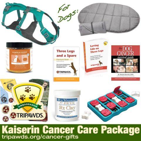 dog cancer gifts