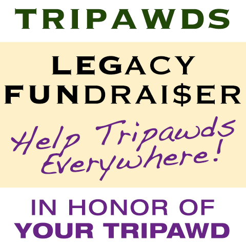 legacy fundraiser
