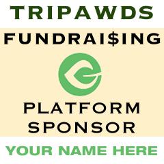 sponsor giving