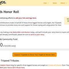 sponsor honor roll