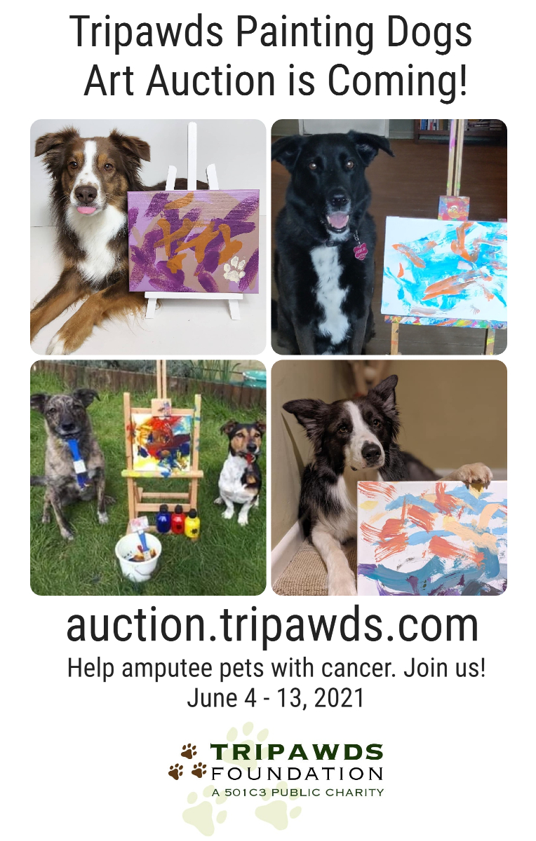 Painting Dogs Auction Promo Pic