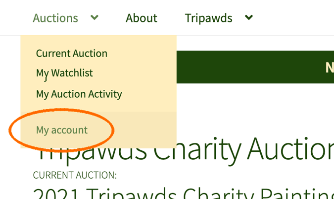 Tripawds Painting Dogs Art Auctions registration
