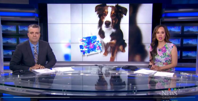Canada Tripawds Dog Art Auction