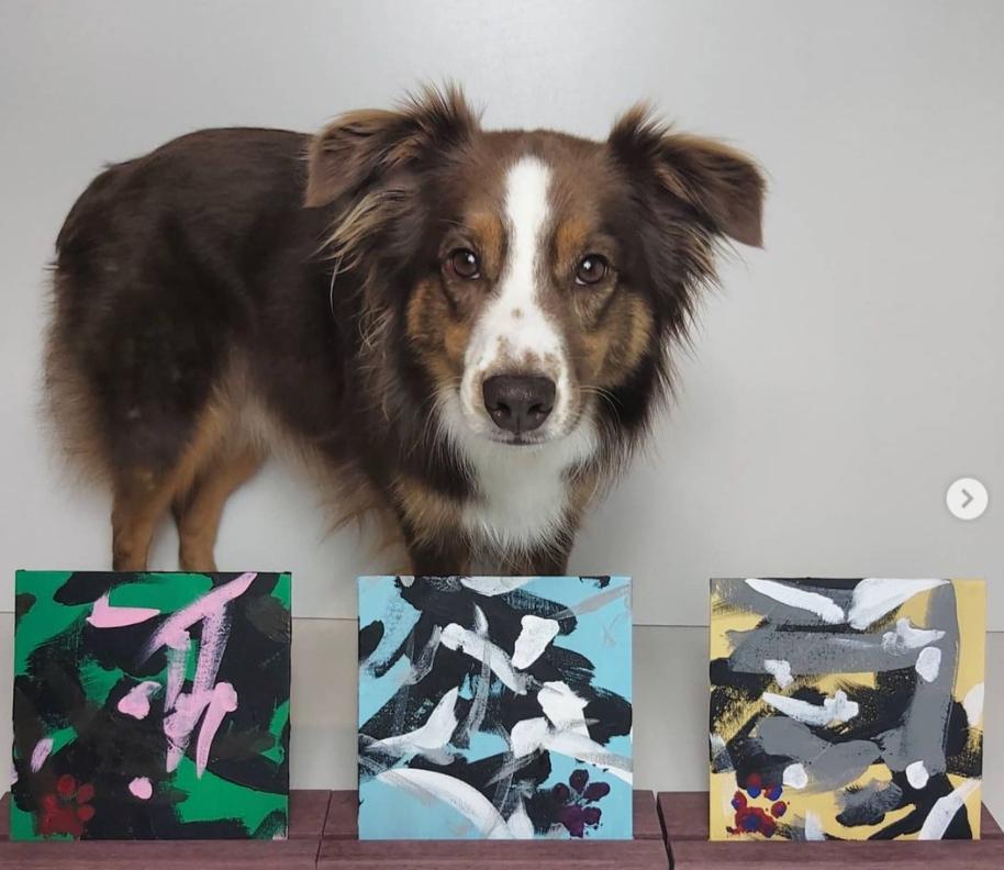 Rogan Canada Tripawds Dog Art Auction