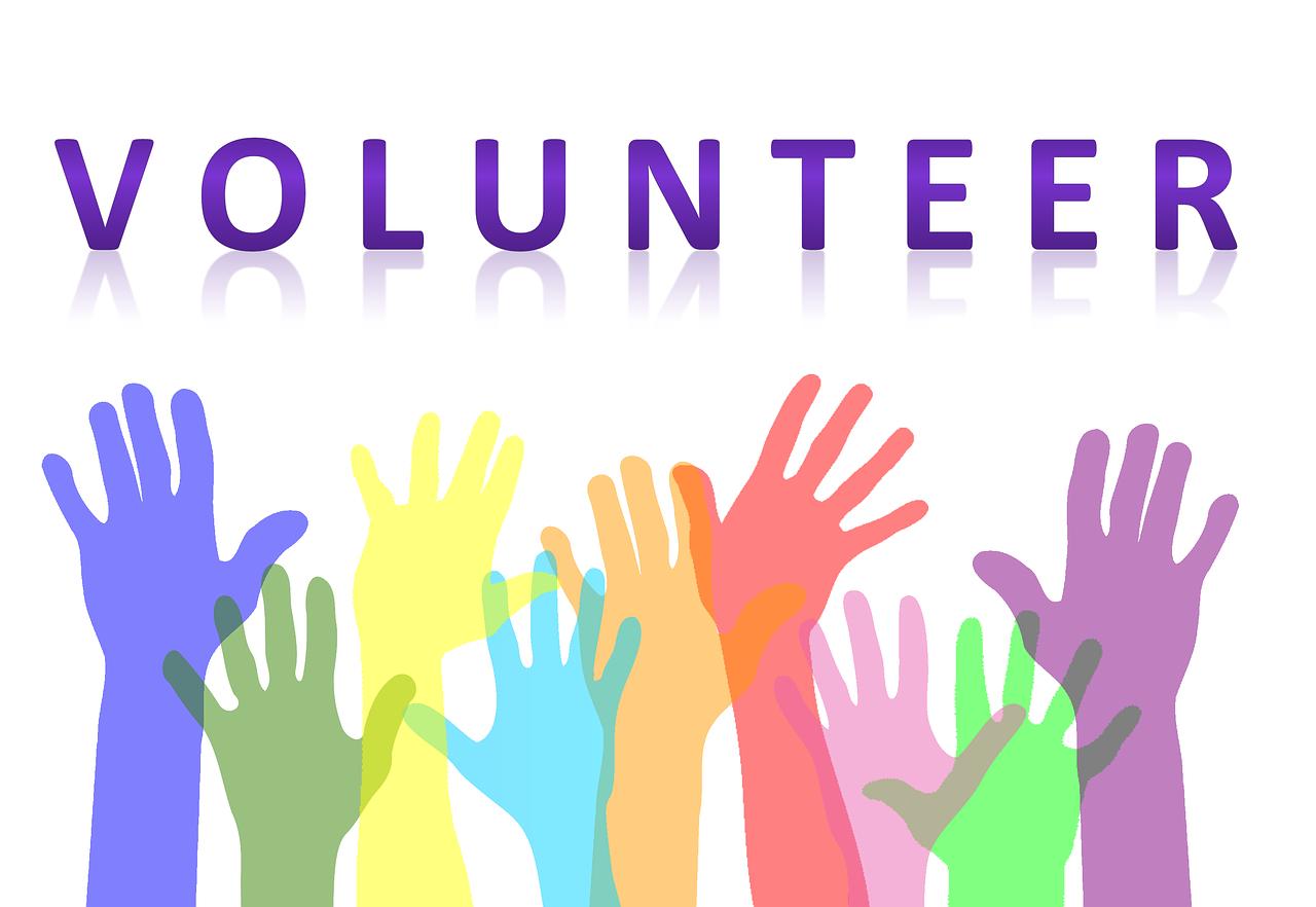 volunteers help Tripawds